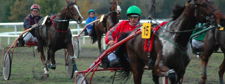 The Racecourse near Saumur