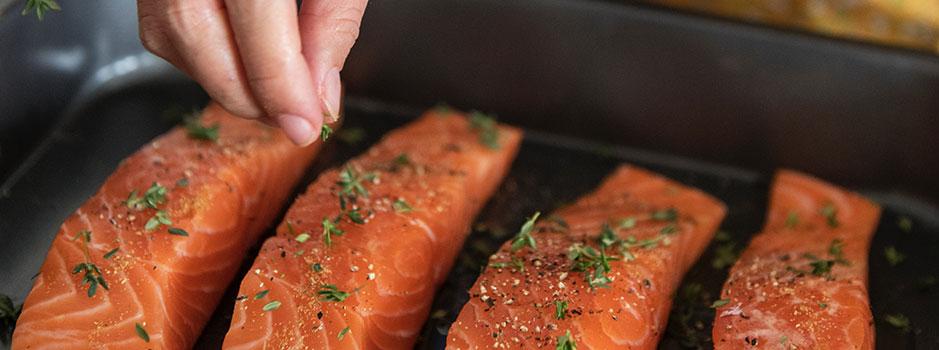 SalmonWeb